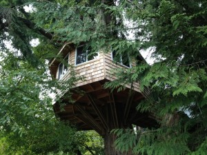 Devoe_Tree_House_copy